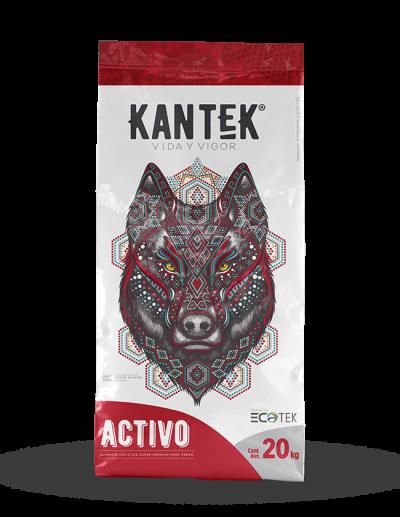 KANTEK Activo